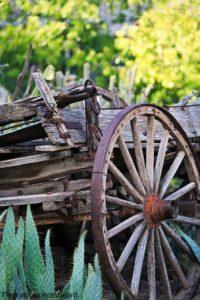 Cactus Wagon