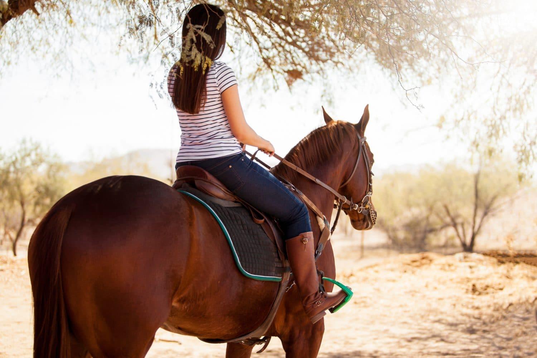 Horseback riding in santa fe
