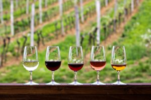 a row of wine glasses